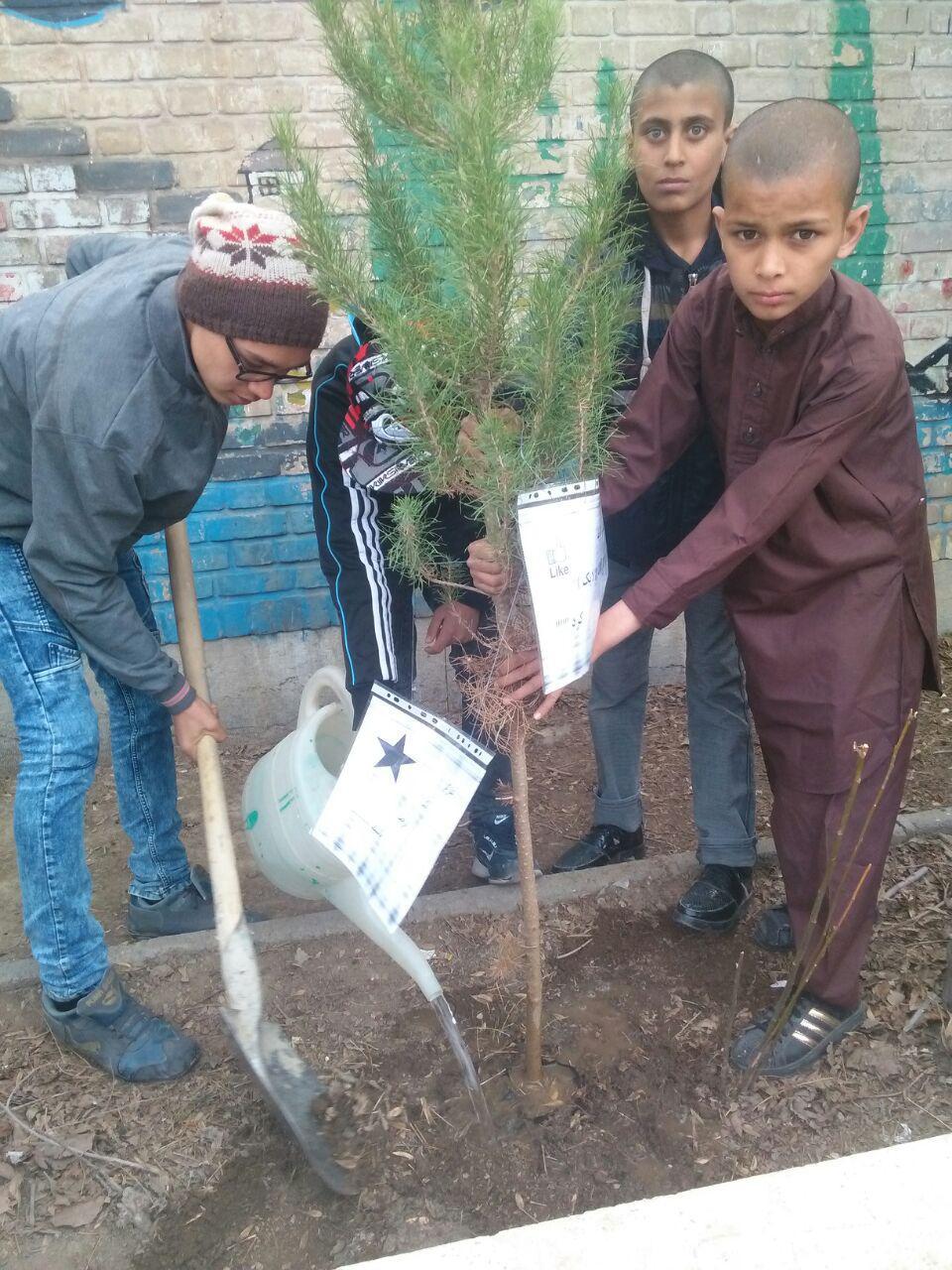 گرامیداشت روز درختکاری در مراکز آموزشی حامی